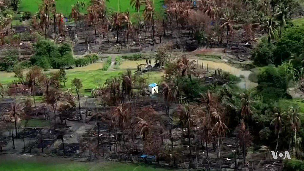 Die Massenvertreibung der Rohingya