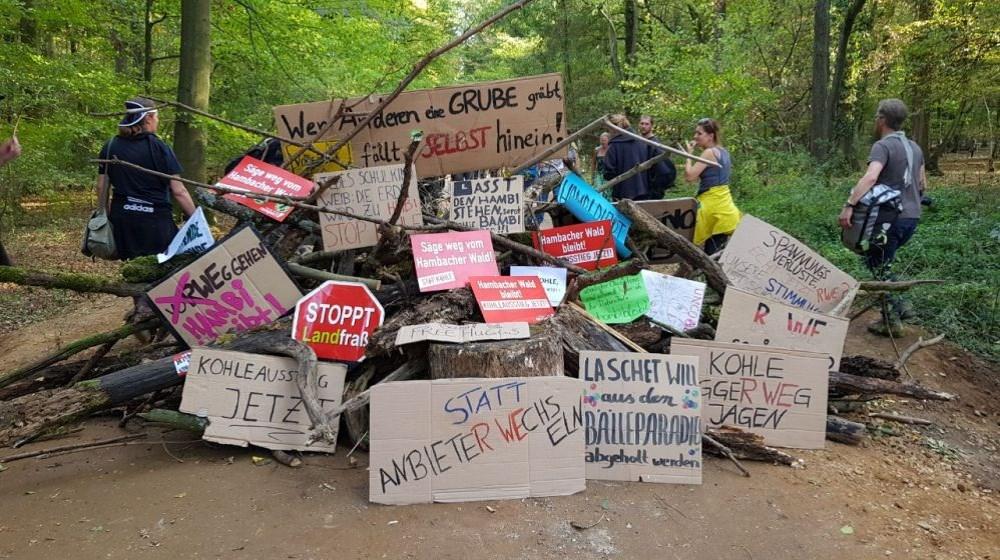 Der Kristallisationspunkt der Klimabewegung